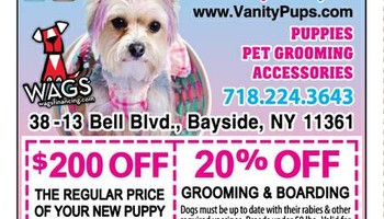 20% OFF Dog & Cat Grooming & Dog Boarding in Bayside Queens NY