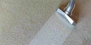 Carpet Cleaning with Professional Truck Mount
