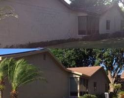 Painting, pressure washing, dry... Miguel's handyman services