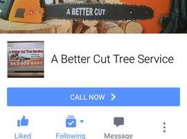 A Better Cut Tree Servive