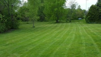 DRC - residential and small business Lawn Care