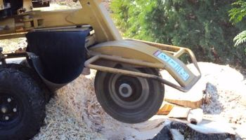 STUMP GRINDING, LOT CLEARING, STUMP REMOVAL. ACCURATE TREE SERVICE
