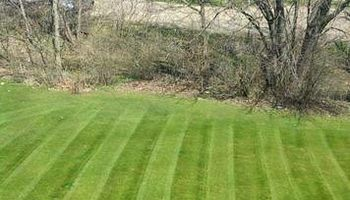Lawn Care - 25-30 dollars per application