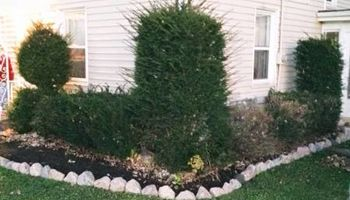 GREG's Landscape & Design (residential/commercial)