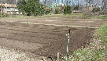Tilling, Gardens, Foodplots, Any Size