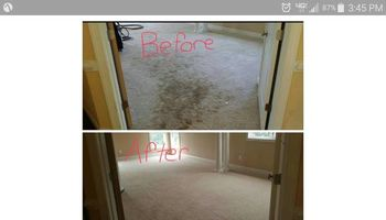 Carpet, Upholstery, Tile & Grout. DEEP Cleaning $99
