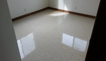 Absolute Carpet/Upholstery/ Window  Clean & Janitorial
