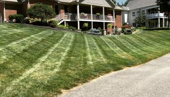 CME Lawn Care & Landscaping