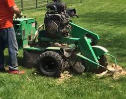 Stump Grinding. You find it, we grind it!
