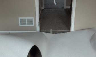Carpet Repair by Certified Flooring Installer