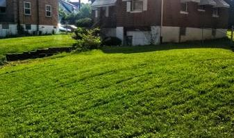 Green Kutz Lawn Care/Weed Control