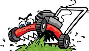 Larkin Lawn care