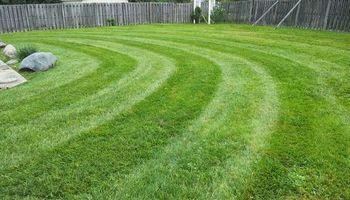 Lawn and Landscaping, We are Insured!