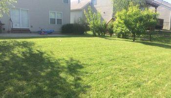 Mark's Lawn Care