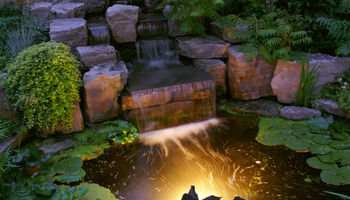 Frugal Water Gardens & Landscaping