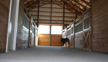 12' x 12' Matted Stalls. Horse Boarding - $250/month