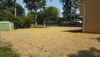 Bork Landscaping, llc. Landscaping/Tree Removal
