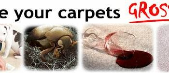 SWEET HOME CARPET CARE