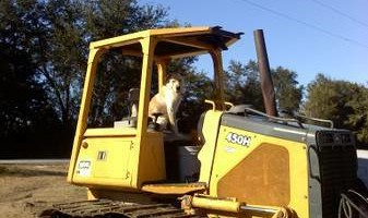 DOZER/OPERATOR FOR HIRE