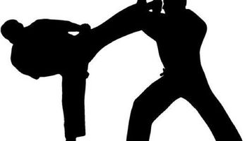 Learn Self Defense / Martial Arts Private Lessons