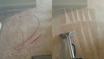 Zap Carpet Cleaning