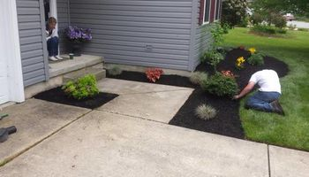 1st Choice Lawn & Landscaping