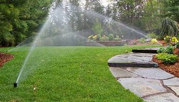 Sprinkler repair at a great price