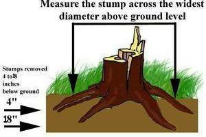 URGENT STUMP GRINDING