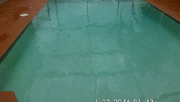 Foreclosure Pool Cleaning + Pressure Washing