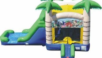 $179 castle jump house and water slide rental
