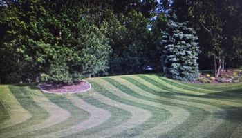 RESIDENTIAL LAWN CARE AND LANDSCAPE STARTING $25