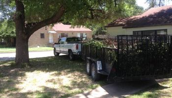 Tree and lawn service. We do it fast!