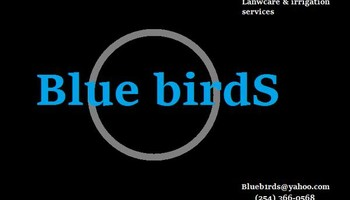 BLUE BIRDS Lawncare & irrigation