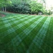 Elite Landscaping. 50% off 1st mowing when signing up for rest of season