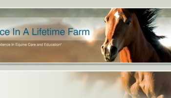 Once In A Lifetime Farm - riding lessons