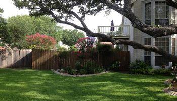 Lawn service. Small yard $45