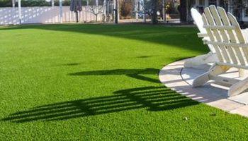EXCELLENT Lawn Service $20 - BEST PRICES