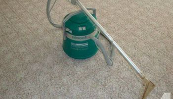 Carpet Cleaner & Handyman Service