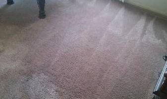 Carpet & Rug Cleaning & Restoration