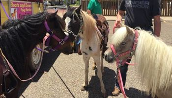 Boots and Bows Pony Parties