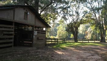 HORSE BOARDING - WITH STALLS - $200/MONTH