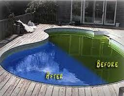 Green Pool and spa cleaning