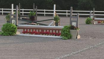 Saw Horse Farm