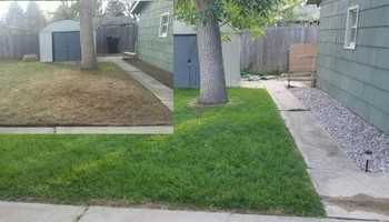 Licensed and insured Lawncare