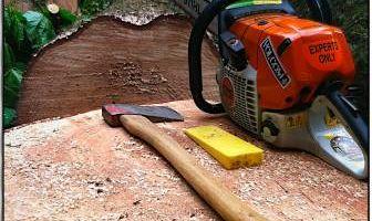Western Sky Tree Service - Professional & Safe - Licensed & Insured