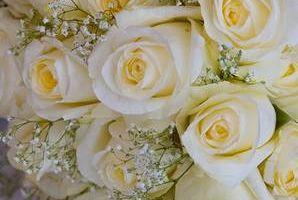 GoodRich Photography - wedding photos
