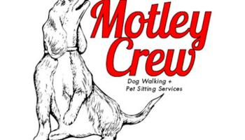 Motley Crew Dog Walking