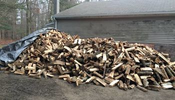 Shrub trimming + firewood
