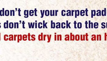 Christy's Carpet Cleaning (Read About Our $60.00 Special)
