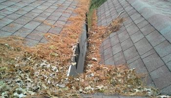 COURTEOUS PROFESSIONAL GUTTER CLEANING